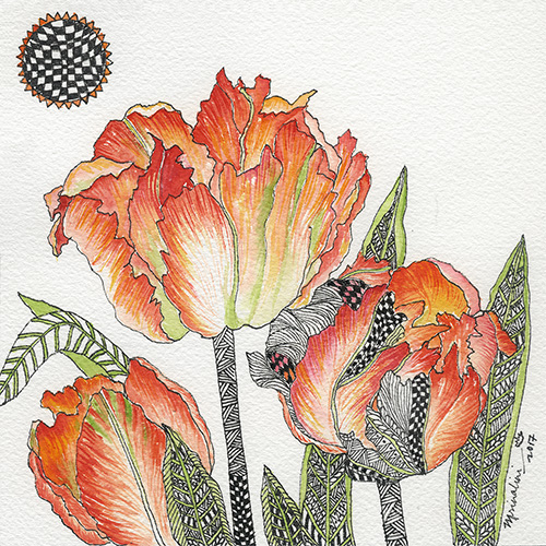 Synergy Parrot Tulips
