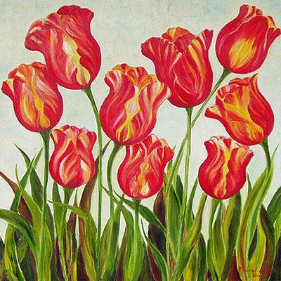 Tulip Fiesta